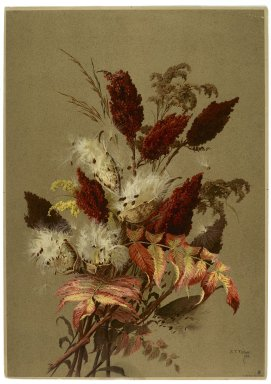 Ellen Thayer Fisher (American, 1847-1911). <em>Sumac and Milk-weed</em>, 1885. Lithograph, 20 9/16 x 14 1/2 in.  (52.2 x 36.8 cm). Brooklyn Museum, Gift of Dr. Clark S. Marlor, 2001.75 (Photo: Brooklyn Museum, 2001.75_PS2.jpg)