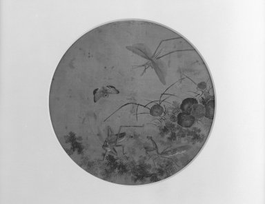 <em>Four Insects in a Garden Setting</em>, 18th-19th century. Ink color on silk, 10 9/16 in. (26.8 cm). Brooklyn Museum, Gift of Dr. Alvin E. Friedman-Kien, 2002.119.13 (Photo: Brooklyn Museum, 2002.119.13_bw.jpg)