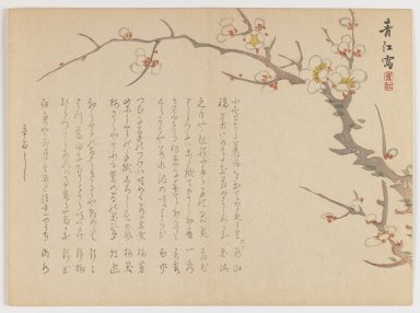Seikô Okuhara (Japanese, 1837-1913). <em>Blossoming Plum Branch</em>, 1861. Woodblock print, horizontal Chûban yoko-e format, 7 1/8 x 9 3/4 in. (18.1 x 24.8 cm). Brooklyn Museum, Gift of Dr. Eleanor Z. Wallace in memory of her husband, Dr. Stanley L. Wallace, 2002.121.18 (Photo: Brooklyn Museum, 2002.121.18_IMLS_PS3.jpg)