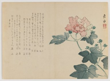 Chôsui Yabu (Japanese, active 1830-1864). <em>Peony Branch</em>, Autumn 1861. Woodblock print; horizontal Chûban yoko-e format, 7 1/8 x 9 3/4 in. (18.1 x 24.8 cm). Brooklyn Museum, Gift of Dr. Eleanor Z. Wallace in memory of her husband, Dr. Stanley L. Wallace, 2002.121.37 (Photo: Brooklyn Museum, 2002.121.37_IMLS_PS3.jpg)