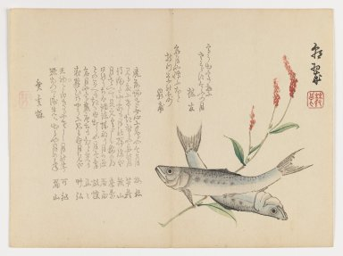Chôsui Yabu (Japanese, active 1830-1864). <em>Fish with Reed</em>, 1863. Woodblock print; horizontal chûban format, 7 3/8 x 9 5/8 in. (18.7 x 24.4 cm). Brooklyn Museum, Gift of Dr. Eleanor Z. Wallace in memory of her husband, Dr. Stanley L. Wallace, 2002.121.9 (Photo: Brooklyn Museum, 2002.121.9_IMLS_PS3.jpg)