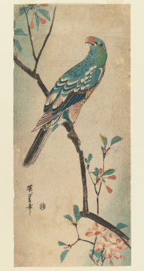 Utagawa Hiroshige (Ando) (Japanese, 1797-1858). <em>Green Parrot on a branch with red flowers</em>, ca. 1830. Woodblock print, Image: 14 3/8 x 6 7/16 in. (36.5 x 16.3 cm). Brooklyn Museum, Gift of Dr. Eleanor Z. Wallace in memory of her husband, Dr. Stanley L. Wallace, 2005.79.4 (Photo: Brooklyn Museum, 2005.79.4_IMLS_PS3.jpg)