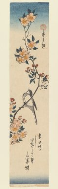 Utagawa Hiroshige (Ando) (Japanese, 1797-1858). <em>Chickadee on Cherry Branch</em>, ca. 1840. Woodblock print, Image: 13 11/16 x 6 7/8 in. (34.8 x 17.4 cm). Brooklyn Museum, Gift of Dr. Eleanor Z. Wallace in memory of her husband, Dr. Stanley L. Wallace, 2005.79.7 (Photo: Brooklyn Museum, 2005.79.7_IMLS_PS3.jpg)