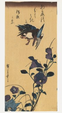 Utagawa Hiroshige (Ando) (Japanese, 1797-1858). <em>Kingfisher flies over purple morning glories (Late edition)</em>, 1850. Woodblock print, Image: 10 1/16 x 4 13/16 in. (25.6 x 12.2 cm). Brooklyn Museum, Gift of Dr. Eleanor Z. Wallace in memory of her husband, Dr. Stanley L. Wallace, 2005.79.8 (Photo: Brooklyn Museum, 2005.79.8_IMLS_PS3.jpg)