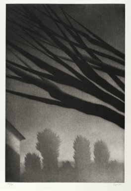 Robert Kipniss (American, born 1931). <em>Branches, Millerton</em>. Mezzotint, Sheet: 19 1/2 x 14 5/16 in. (49.5 x 36.3 cm). Brooklyn Museum, Gift of James F. White, 2006.16.5. © artist or artist's estate (Photo: Brooklyn Museum, 2006.16.5_PS4.jpg)