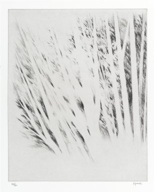 Robert Kipniss (American, born 1931). <em>Pages from a sketchbook  #2</em>. Drypoint, Sheet: 15 1/2 x 13 in. (39.4 x 33 cm). Brooklyn Museum, Gift of James F. White, 2006.16.6. © artist or artist's estate (Photo: Brooklyn Museum, 2006.16.6_PS1.jpg)