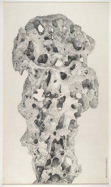 Liu Dan (Chinese, born 1953). <em>Taihu Rock from Jiemei Studio</em>, 2006. Ink on paper, Image: 102 3/8 x 60 1/8 in. (260 x 152.7 cm). Brooklyn Museum, Gift of the Asian Art Council, 2005 China Trip Participants, in honor of Amy G. Poster, Lisa and Bernard Selz Curator and Chair, Asian Art, 2006.19 (Photo: Brooklyn Museum, 2006.19_PS6.jpg)