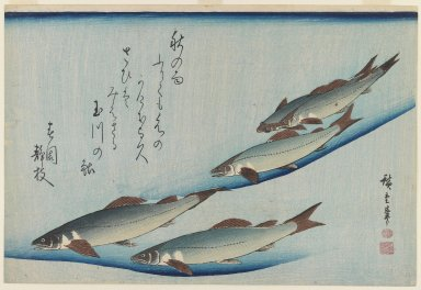 Utagawa Hiroshige (Ando) (Japanese, 1797-1858). <em>Trout, from an untitled series known as Selection of Fish</em>, ca. 1832-1833. Color woodblock print on paper, 9 3/4 x 14 7/16 in. (24.8 x 36.7 cm). Brooklyn Museum, Bequest of Dr. Eleanor Z. Wallace, 2007.31.10 (Photo: Brooklyn Museum, 2007.31.10_IMLS_PS3.jpg)
