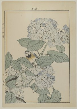 Unknown. <em>[Untitled] (Bird with Hydrangea)</em>. Print, Other (Sight): 12 3/16 x 8 7/16 in. (31 x 21.4 cm). Brooklyn Museum, Gift of the Estate of Dr. Eleanor Z. Wallace, 2007.32.121 (Photo: Brooklyn Museum, 2007.32.121_PS4.jpg)