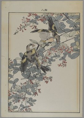 Unknown. <em>[Untitled] (Two Birds with Pink Flowers)</em>. Print, Other (Sight): 12 3/16 x 8 7/16 in. (31 x 21.4 cm). Brooklyn Museum, Gift of the Estate of Dr. Eleanor Z. Wallace, 2007.32.122 (Photo: Brooklyn Museum, 2007.32.122_PS4.jpg)