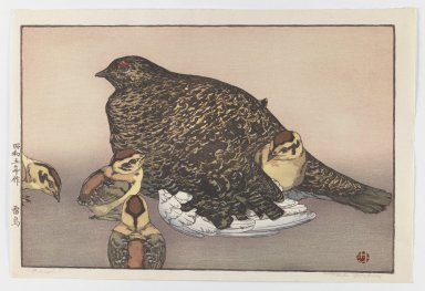 Yoshida Toshi (Japanese, 1911-1995). <em>Grouse</em>, 1930. Color woodblock print on paper, Sheet: 10 3/4 x 16 in. (27.3 x 40.6 cm). Brooklyn Museum, Gift of the Estate of Dr. Eleanor Z. Wallace, 2007.32.135. © artist or artist's estate (Photo: Brooklyn Museum, 2007.32.135_IMLS_PS3.jpg)