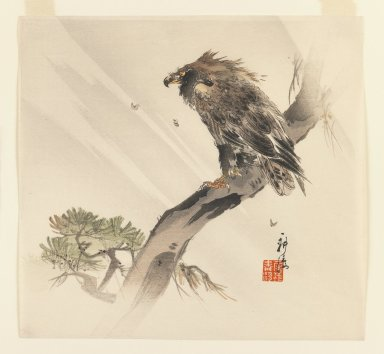 Kogyo Terazaki (Japanese, 1866-1919). <em>Eagle in Pine Tree</em>, ca. 1910. Color woodblock print on paper, 9 3/8 x 10 in. (23.8 x 25.4 cm). Brooklyn Museum, Gift of the Estate of Dr. Eleanor Z. Wallace, 2007.32.22 (Photo: Brooklyn Museum, 2007.32.22_IMLS_PS3.jpg)