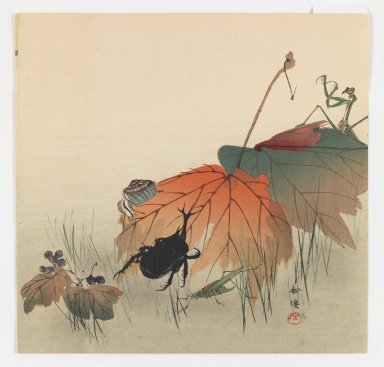 Kogyo Terazaki (Japanese, 1866-1919). <em>Insects and Autumn Leaves</em>, ca. 1910. Color woodblock print on paper, 9 1/4 x 9 9/16 in. (23.5 x 24.3 cm). Brooklyn Museum, Gift of the Estate of Dr. Eleanor Z. Wallace, 2007.32.23 (Photo: Brooklyn Museum, 2007.32.23_IMLS_PS3.jpg)