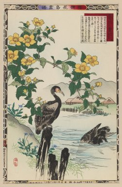 Kono Bairei (Japanese, 1844-1895). <em>Japanese Rose and Cormorants, from the series Bairei's Picture Album of Birds and Flowers</em>, 1883. Color woodblock print on paper, 14 1/2 x 9 3/8 in. (36.8 x 23.8 cm). Brooklyn Museum, Gift of the Estate of Dr. Eleanor Z. Wallace, 2007.32.28 (Photo: Brooklyn Museum, 2007.32.28_IMLS_PS3.jpg)