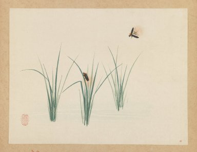 Mochizuki Gyokusen (Japanese, 1794-1852). <em>Fireflies</em>, ca. 1850. Woodblock color print, 9 7/16 x 12 7/16 in. (24 x 31.6 cm). Brooklyn Museum, Gift of the Estate of Dr. Eleanor Z. Wallace, 2007.32.34 (Photo: Brooklyn Museum, 2007.32.34_IMLS_PS3.jpg)
