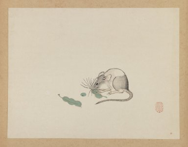 Mochizuki Gyokusen (Japanese, 1794-1852). <em>Mouse Eating Pea Pods</em>, ca. 1850. Woodblock color print, 9 1/2 x 12 7/16 in. (24.1 x 31.6 cm). Brooklyn Museum, Gift of the Estate of Dr. Eleanor Z. Wallace, 2007.32.37 (Photo: Brooklyn Museum, 2007.32.37_IMLS_PS3.jpg)