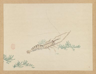 Mochizuki Gyokusen (Japanese, 1794-1852). <em>Crayfish</em>, ca. 1850. Woodblock color print, Other: 9 1/2 x 12 7/8 in. (24.1 x 32.7 cm). Brooklyn Museum, Gift of the Estate of Dr. Eleanor Z. Wallace, 2007.32.38 (Photo: Brooklyn Museum, 2007.32.38_IMLS_PS3.jpg)