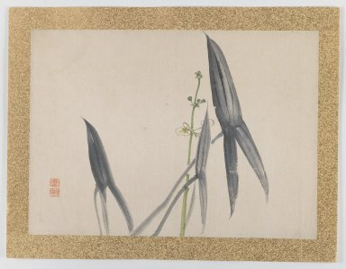 Nishiyama Hoen (Japanese, 1804-1867). <em>[Untitled] (Flower Subject)</em>, 1855. Woodblock color print, 10 3/4 x 15 in. (27.3 x 38.1 cm). Brooklyn Museum, Gift of the Estate of Dr. Eleanor Z. Wallace, 2007.32.43 (Photo: Brooklyn Museum, 2007.32.43_IMLS_PS3.jpg)
