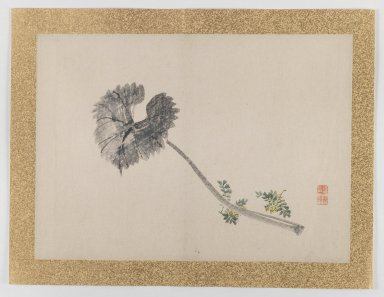 Nishiyama Hoen (Japanese, 1804-1867). <em>[Untitled] Single Leaf and Small Yellow Flowers)</em>, 1855. Ink and light color on paper, 10 3/4 x 14 15/16 in. (27.3 x 37.9 cm). Brooklyn Museum, Gift of the Estate of Dr. Eleanor Z. Wallace, 2007.32.45 (Photo: Brooklyn Museum, 2007.32.45_IMLS_PS3.jpg)