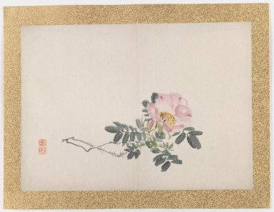Nishiyama Hoen (Japanese, 1804-1867). <em>[Untitled] (Pink Rose)</em>, 1855. Ink and light color on paper, 10 3/4 x 14 15/16 in. (27.3 x 37.9 cm). Brooklyn Museum, Gift of the Estate of Dr. Eleanor Z. Wallace, 2007.32.49 (Photo: Brooklyn Museum, 2007.32.49_IMLS_PS3.jpg)