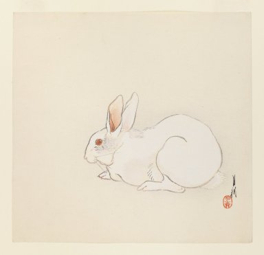 Ogata Gekko (Japanese, 1859-1920). <em>Hare</em>, ca. 1890-1910. Color woodblock print on paper, 9 1/2 x 9 7/8 in. (24.1 x 25.1 cm). Brooklyn Museum, Gift of the Estate of Dr. Eleanor Z. Wallace, 2007.32.59 (Photo: Brooklyn Museum, 2007.32.59_IMLS_PS3.jpg)