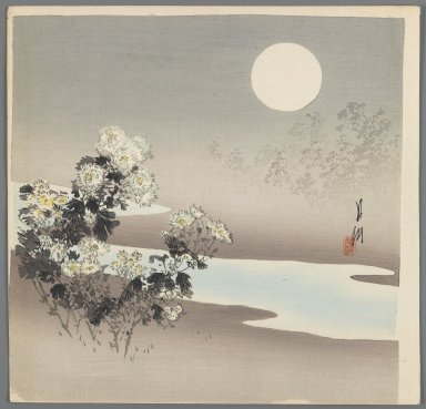 Ogata Gekko (Japanese, 1859-1920). <em>Chrysanthemums in Moonlight</em>, ca. 1890-1910. Color woodblock print on paper, 9 1/2 x 9 13/16 in. (24.1 x 24.9 cm). Brooklyn Museum, Gift of the Estate of Dr. Eleanor Z. Wallace, 2007.32.63 (Photo: Brooklyn Museum, 2007.32.63_IMLS_PS3.jpg)