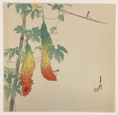Ogata Gekko (Japanese, 1859-1920). <em>Gourds Hanging on a Vine</em>, ca. 1890-1910. Color woodblock print on paper, 9 1/16 x 9 5/16 in. (23 x 23.7 cm). Brooklyn Museum, Gift of the Estate of Dr. Eleanor Z. Wallace, 2007.32.71 (Photo: Brooklyn Museum, 2007.32.71_IMLS_PS3.jpg)
