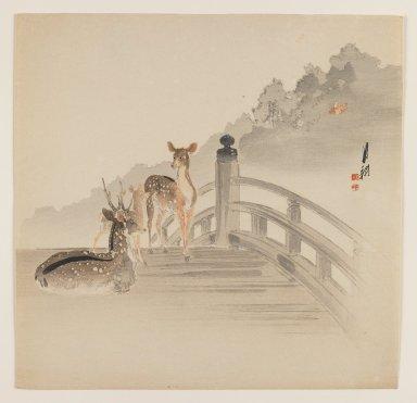 Ogata Gekko (Japanese, 1859-1920). <em>Deer on Bridge</em>, ca. 1890-1910. Color woodblock print on paper, 9 5/16 x 9 1/8 in. (23.7 x 23.2 cm). Brooklyn Museum, Gift of the Estate of Dr. Eleanor Z. Wallace, 2007.32.73 (Photo: Brooklyn Museum, 2007.32.73_IMLS_PS3.jpg)