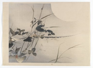 Ogata Gekko (Japanese, 1859-1920). <em>Grasses in Moonlight</em>, ca. 1890-1900. Color woodblock print with silver pigment on paper, 10 1/4 x 13 7/8 in. (26 x 35.2 cm). Brooklyn Museum, Gift of the Estate of Dr. Eleanor Z. Wallace, 2007.32.79 (Photo: Brooklyn Museum, 2007.32.79_IMLS_PS4.jpg)