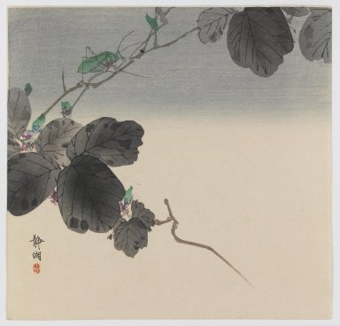 Okuhara Seiko (Japanese, 1837-1913). <em>Vine with Green Grasshopper</em>, ca. 1910. Color woodblock print on paper, 9 1/4 x 9 9/16 in. (23.5 x 24.3 cm). Brooklyn Museum, Gift of the Estate of Dr. Eleanor Z. Wallace, 2007.32.88 (Photo: Brooklyn Museum, 2007.32.88_IMLS_PS3.jpg)
