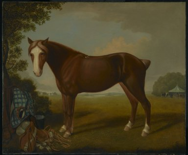 Thomas Hewes Hinckley (American, 1813-1896). <em>Portrait of a Horse</em>, 1841. Oil on canvas Brooklyn Museum, Gift of Altria, 2008.27 (Photo: Brooklyn Museum, 2008.27_PS2.jpg)