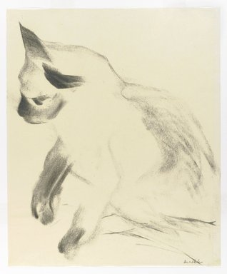 Stefan Hirsch (American, born Germany, 1899-1964). <em>Siamese Cat</em>, ca. 1940. Charcoal on cream, thin, smooth wove paper, Sheet: 17 x 14 in. (43.2 x 35.6 cm). Brooklyn Museum, Gift of Janis Conner and Joel Rosenkranz, 2008.69. © artist or artist's estate (Photo: Brooklyn Museum, 2008.69_PS4.jpg)