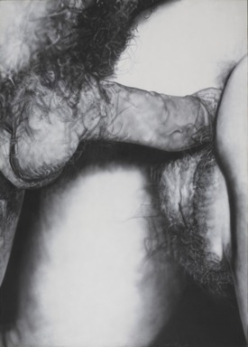 Betty Tompkins (American, born 1945). <em>Fuck Painting #6</em>, 1973. Acrylic on canvas, 84 × 60 in. (213.4 × 152.4 cm). Brooklyn Museum, Gift of Robert Gober and Donald Moffett, 2016.23. © artist or artist's estate (Photo: , 2016.23_PS9.jpg)