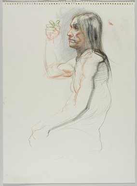 Jeremy Deller (British, born 1966). <em>Untitled (Seated Pose) from Iggy Pop Life Class by Jeremy Deller</em>, 2016. Colored pencils and charcoal on paper, 24 1/2 x 18 in. (62.2 x 45.7 cm). Brooklyn Museum, Brooklyn Museum Collection, 2016.3.14e. © artist or artist's estate (Photo: Brooklyn Museum, 2016.3.14e_PS9.jpg)