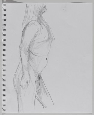 Jeremy Deller (British, born 1966). <em>Untitled (Standing Pose) from Iggy Pop Life Class by Jeremy Deller</em>, 2016. Graphite pencil on paper, 11 × 9 in. (27.9 × 22.9 cm). Brooklyn Museum, Brooklyn Museum Collection, 2016.3.8a. © artist or artist's estate (Photo: Brooklyn Museum, 2016.3.8a_PS9.jpg)