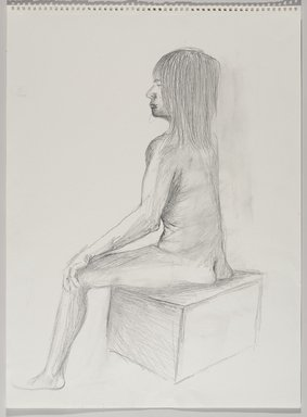Jeremy Deller (British, born 1966). <em>Untitled (Seated Pose) from Iggy Pop Life Class by Jeremy Deller</em>, 2016. Graphite pencil on paper, 24 1/2 x 18 1/16 in. (62.2 x 45.9 cm). Brooklyn Museum, Brooklyn Museum Collection, 2016.3.8f. © artist or artist's estate (Photo: Brooklyn Museum, 2016.3.8f_PS9.jpg)