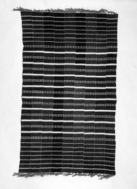 <em>Cloth</em>. Cloth, 48 1/16 x 88 9/16 in. (122 x 225 cm). Brooklyn Museum, Robert B. Woodward Memorial Fund, 24.148. Creative Commons-BY (Photo: Brooklyn Museum, 24.148_bw.jpg)
