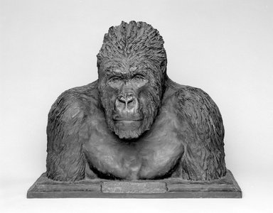 Carl E. Akeley (American, 1864-1926). <em>The Old Man of Mikeno</em>, 1923. Bronze, 24 3/4 x 29 1/2 x 20 in. (62.9 x 74.9 x 50.8 cm). Brooklyn Museum, Gift of George D. Pratt, 24.552 (Photo: Brooklyn Museum, 24.552_bw.jpg)