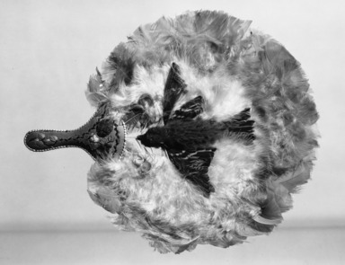Probably Huron. <em>Fan with Handle</em>, late 19th-early 20th century. Feathers, porcupine quills, bark, bird body, 13 9/16 x 11 1/4 in. (34.4 x 28.6 cm). Brooklyn Museum, Gift of C. T. Dotter, 25.873. Creative Commons-BY (Photo: Brooklyn Museum, 25.873_acetate_bw.jpg)