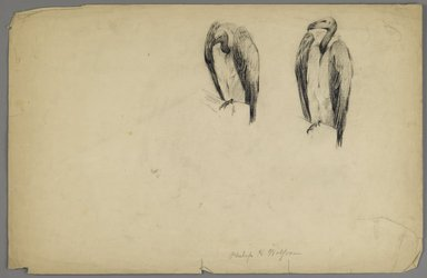 Philip H. Wolfrom (American, 1870-1904). <em>Vultures</em>, n.d. Charcoal on paper, Sheet: 12 7/8 x 19 3/4 in. (32.7 x 50.2 cm). Brooklyn Museum, Gift of Anna Wolfrom Dove, 27.813 (Photo: Brooklyn Museum, 27.813_PS6.jpg)