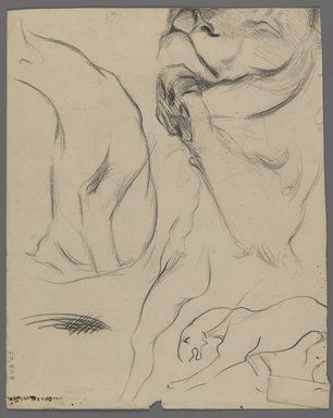 Philip H. Wolfrom (American, 1870-1904). <em>Head of Lion (recto) and Studies of Lion (verso)</em>, n.d. Graphite on paper, Sheet: 10 5/16 x 8 1/8 in. (26.2 x 20.6 cm). Brooklyn Museum, Gift of Anna Wolfrom Dove, 27.828 (Photo: Brooklyn Museum, 27.828_verso_PS4.jpg)