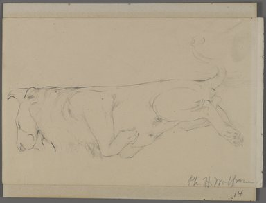 Philip H. Wolfrom (American, 1870-1904). <em>Sleeping Lion</em>, n.d. Graphite on paper mounted to paperboard, Sheet: 6 x 9 5/16 in. (15.2 x 23.7 cm). Brooklyn Museum, Gift of Anna Wolfrom Dove, 27.846 (Photo: Brooklyn Museum, 27.846_PS4.jpg)