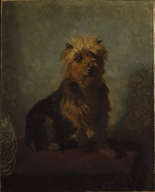 Abbott H. Thayer (American, 1849-1921). <em>Chadwick's Dog</em>, 1874. Oil on canvas, 20 1/2 x 16 9/16 in. (52 x 42 cm). Brooklyn Museum, Gift of Mrs. John White Chadwick, 29.62 (Photo: Brooklyn Museum, 29.62_SL1.jpg)