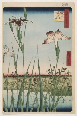 Utagawa Hiroshige (Ando) (Japanese, 1797-1858). <em>Horikiri Iris Garden (Horikiri no Hanashobu), No. 64 from One Hundred Famous Views of Edo</em>, 5th month of 1857. Woodblock print, Sheet: 14 3/16 x 9 5/16 in. (36.1 x 23.6 cm). Brooklyn Museum, Gift of Anna Ferris, 30.1478.64 (Photo: Brooklyn Museum, 30.1478.64_large_SL1.jpg)