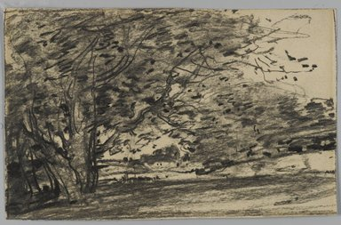 Joseph Frank Currier (American, 1843-1909). <em>Study of Trees</em>, ca. 1880. Charcoal on paper, sheet: 4 3/8 x 6 15/16 in. (11.1 x 17.6 cm). Brooklyn Museum, Gift of Mrs. John White Alexander, 31.202.1 (Photo: Brooklyn Museum, 31.202.1_PS3.jpg)