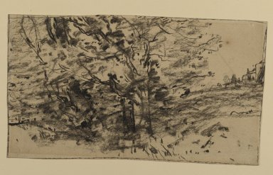 Joseph Frank Currier (American, 1843-1909). <em>Study of Trees</em>, ca. 1880. Charcoal on wove paper, sheet: 4 3/16 x 7 3/8 in. (10.6 x 18.7 cm). Brooklyn Museum, Gift of Mrs. John White Alexander, 31.202.2 (Photo: Brooklyn Museum, 31.202.2_PS2.jpg)
