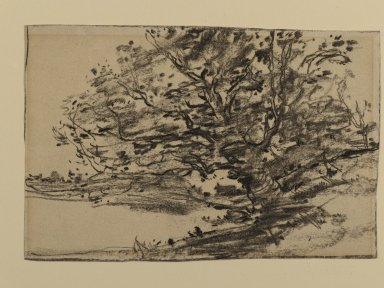 Joseph Frank Currier (American, 1843-1909). <em>Study of Trees</em>, ca. 1880. Charcoal on cream, medium weight, sightly textured laid paper, sheet: 4 5/8 x 6 5/16 in. (11.7 x 16 cm). Brooklyn Museum, Gift of Mrs. John White Alexander, 31.202.3 (Photo: Brooklyn Museum, 31.202.3_PS2.jpg)