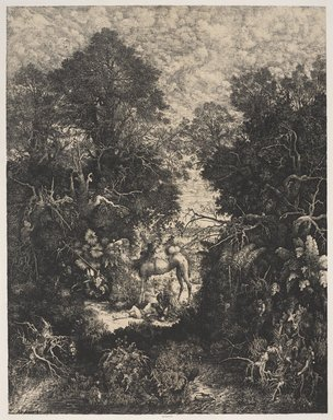 Rodolphe Bresdin (French, 1822-1885). <em>The Good Samaritan (Le bon samaritain)</em>, 1861. Lithograph on chine colle; primary paper and thick, slightly textured plate paper, 29 3/4 x 23 3/4 in. (75.6 x 60.3 cm). Brooklyn Museum, Gift of Clara De Saldern, 33.58 (Photo: Brooklyn Museum, 33.58_PS9.jpg)