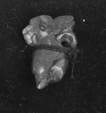 <em>Pendant</em>. Jade Brooklyn Museum, Alfred W. Jenkins Fund, 35.576. Creative Commons-BY (Photo: Brooklyn Museum, 35.576_acetate_bw.jpg)
