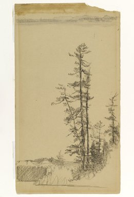 Homer Dodge Martin (American, 1836-1897). <em>Trees</em>, n.d. Black crayon and graphite on cream, moderately thick, smooth wove paper, Sheet: 13 1/16 x 7 1/4 in. (33.2 x 18.4 cm). Brooklyn Museum, Gift of Mrs. William A. Putnam, 36.488 (Photo: Brooklyn Museum, 36.488_PS1.jpg)